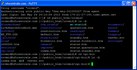 F10xx90-2010-05-29-1750-PuTTY-aliases.png
