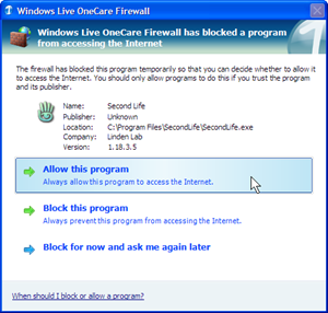 Second Life Installer Firewall Hit (click for larger image)