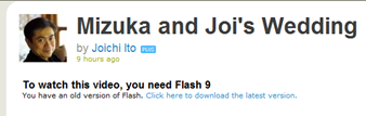 Joi's site reports I have an old version of Flash (click for larger image)
